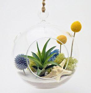 best diy terrarium kit
