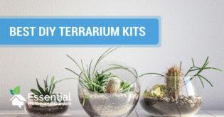 best diy terrarium kits