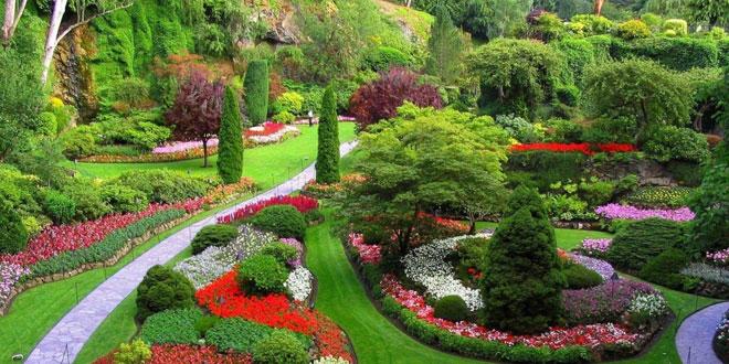 Essential Home and Garden | Essential Home and Garden