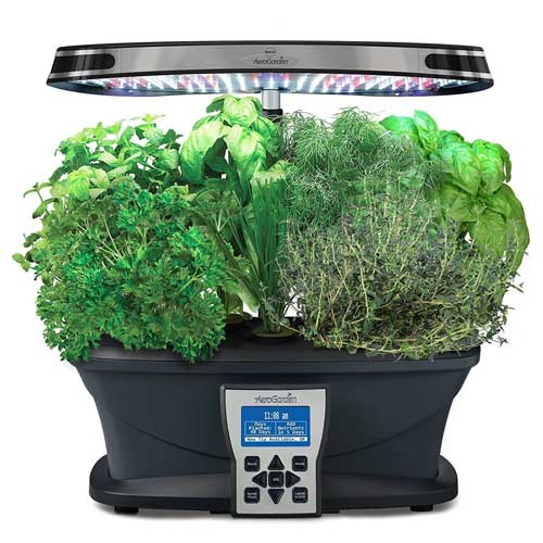 Aerogarden Ultra Review