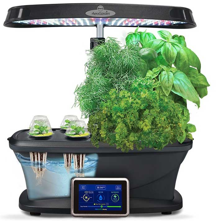 Aerogarden Review