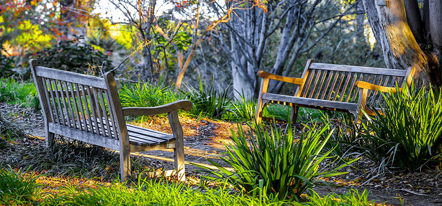 Groovy Choosing The Best Outdoor Bench Essential Home And Garden Evergreenethics Interior Chair Design Evergreenethicsorg