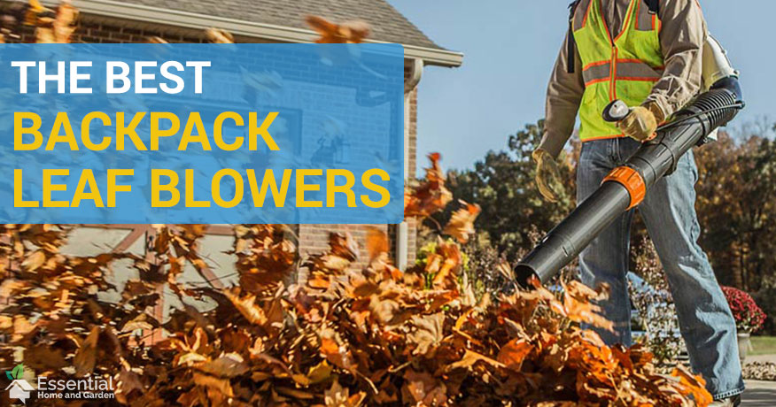 The Best Backpack Leaf Blowers Full Reviews And Buyers Guide