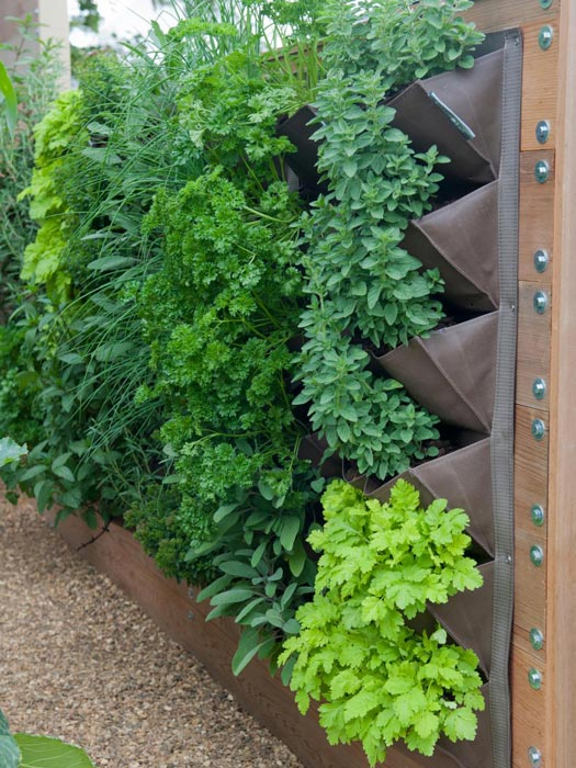 pocket wall garden