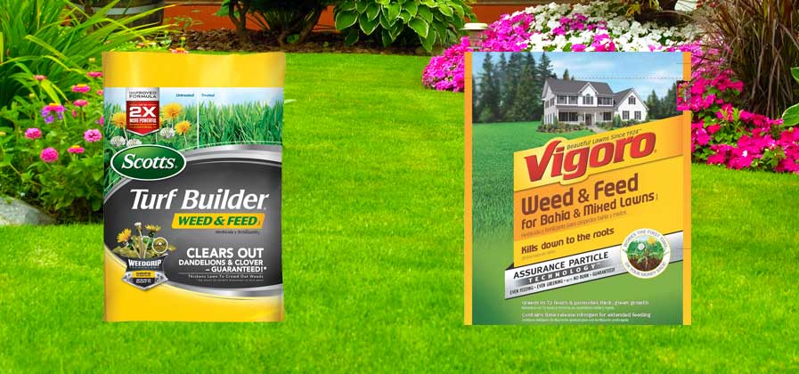 Scotts Fertilizer vs Vigoro Fertilizer – Which is Best