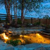 Choose The Best Pond Lights - The Complete Pond Lighting Guide