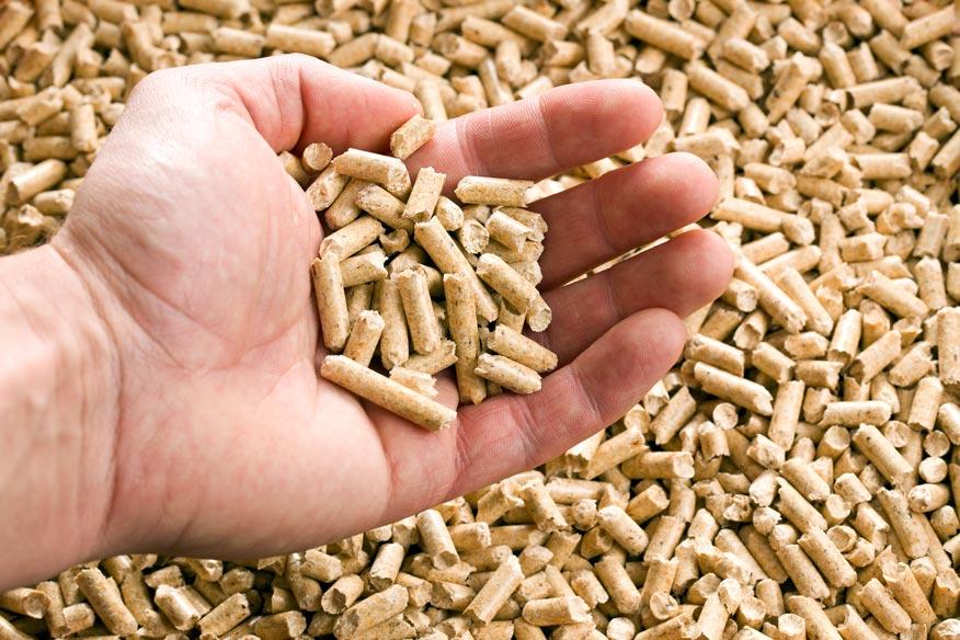 man holding pellet fuel
