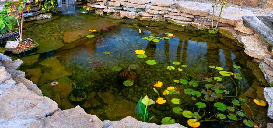 how to get wrinkles out of pond liner