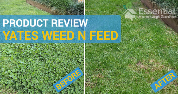 yates weed n feed review