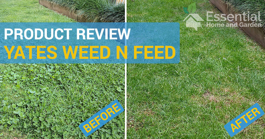 yates weed and feed review