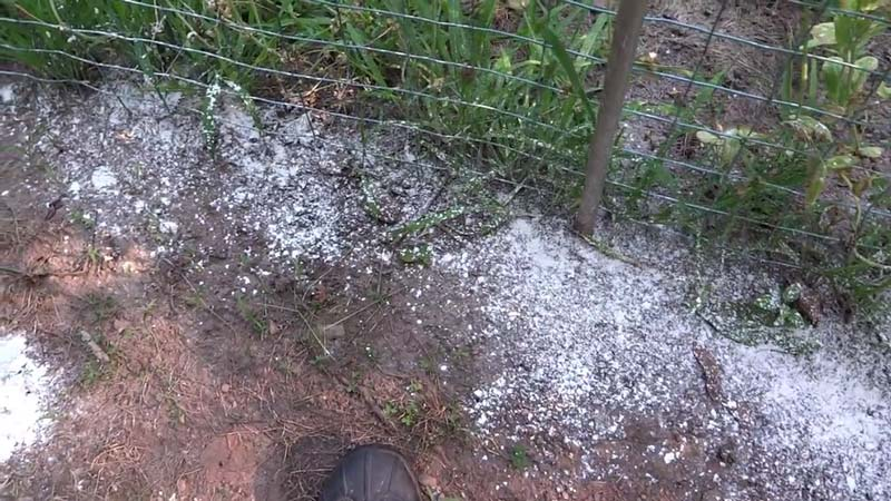 diatomaceous earth outdoors