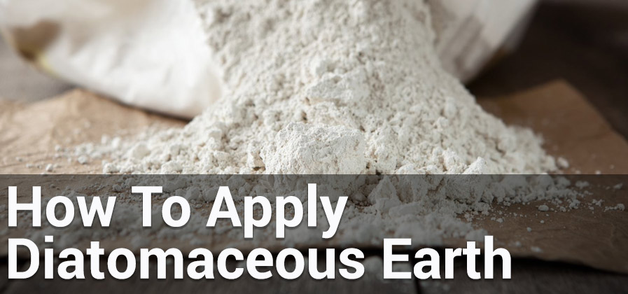 How to apply diatomaceous earth essential home and garden - How to use diatomaceous earth in the garden ...