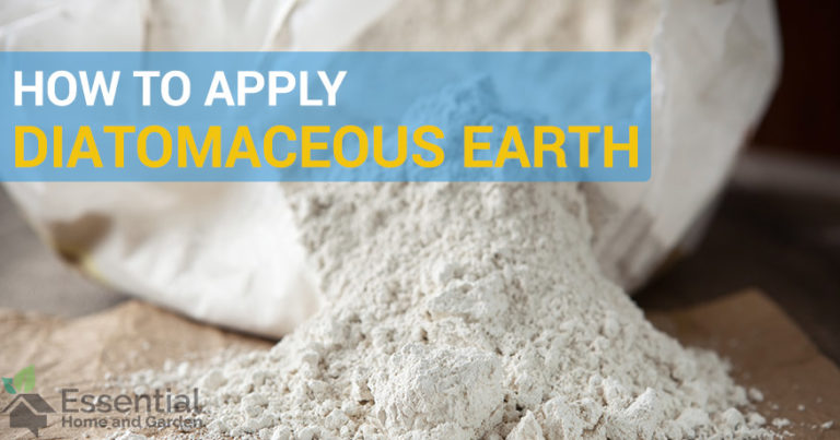 how to apply diatomaceous earth