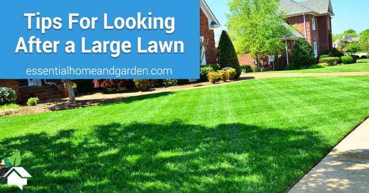 lawn care for a large lawn