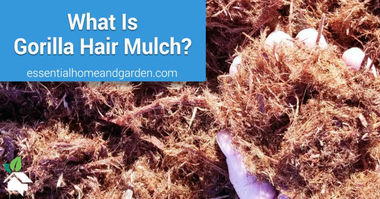 what is gorilla hair mulch