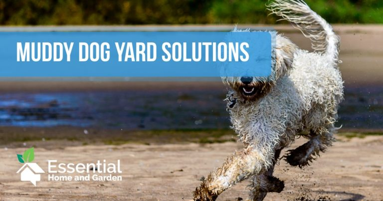 muddy dog yard solutions