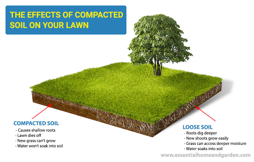 Loosen Compacted Soil And Improve Your Lawn
