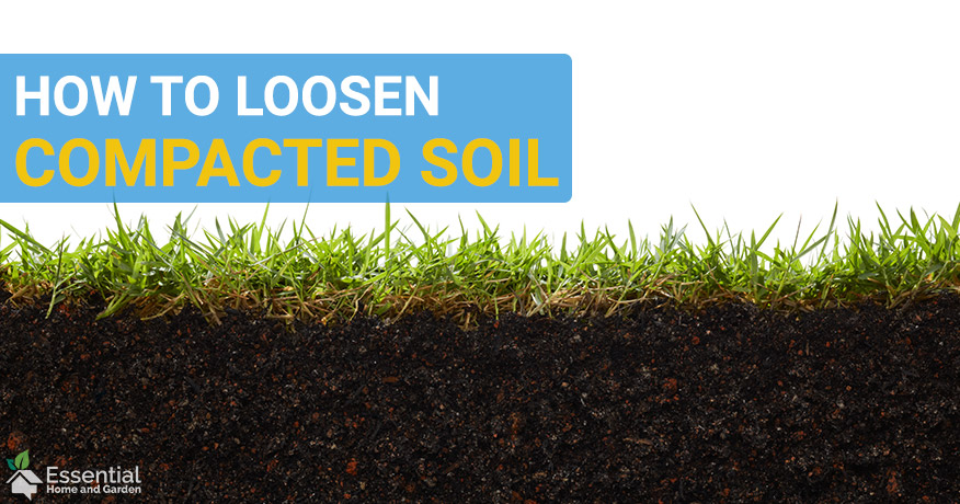 how to loosen compacted soil