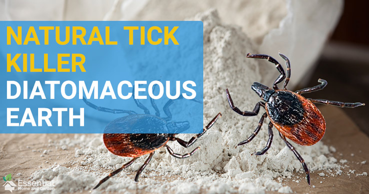 does diatomaceous earth kill ticks