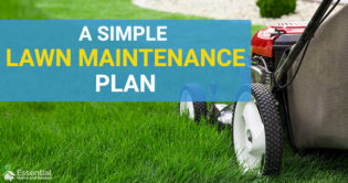 lawn maintenance plan