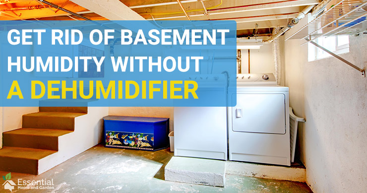 How To Get Rid Of Humidity In Your Basement Without a Dehumidifier