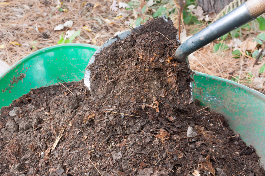 composting yard waste