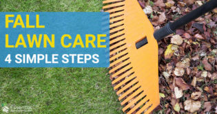 fall lawn care guide