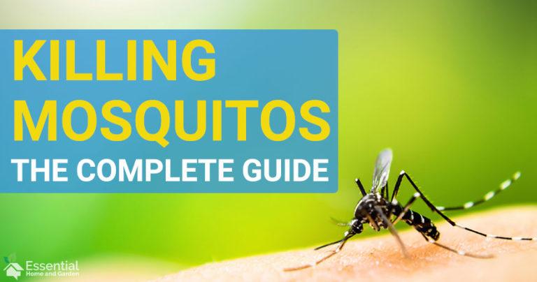 best mosquito killer