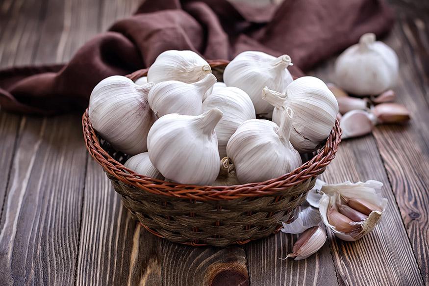 garlic a natural mosquito repellent