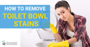 how to remove toilet bowl stains