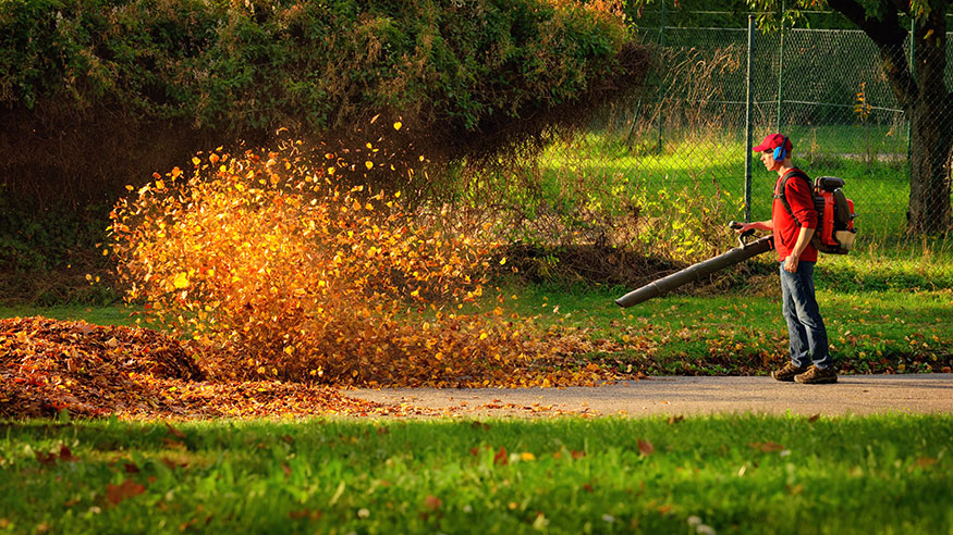 using a leaf blower to remove leaves from lawn