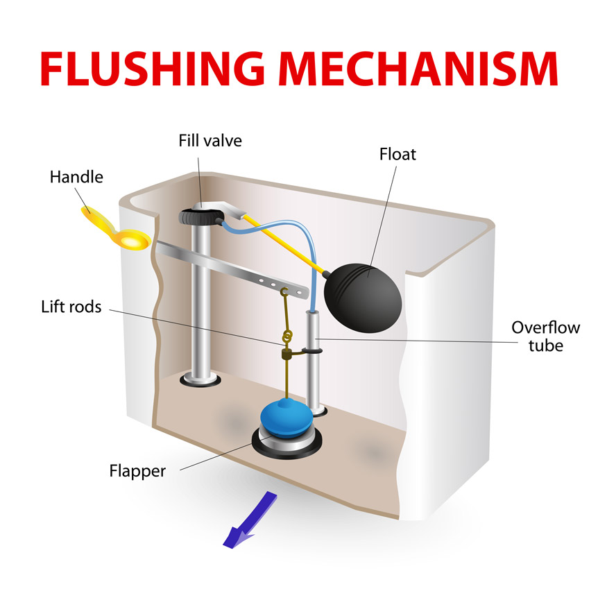 toilet flush mechanism - flapper
