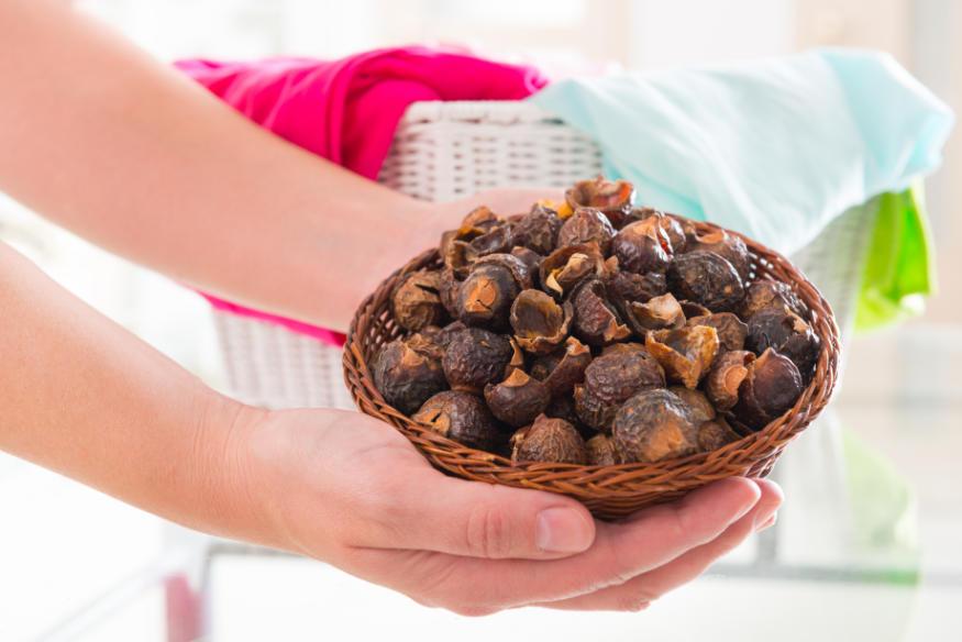 Soap Nuts laundry alternative