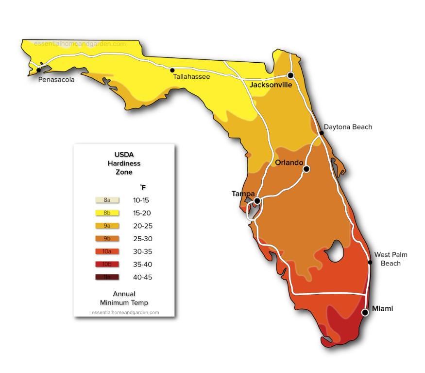 Florida USDA hardiness zone map