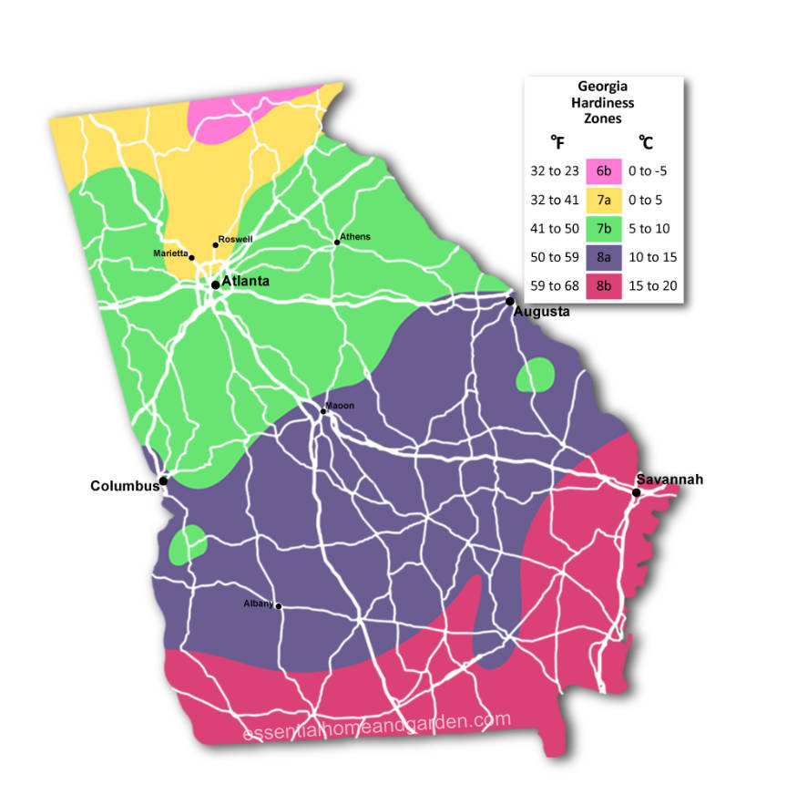 Georgia USDA Hardiness Zones