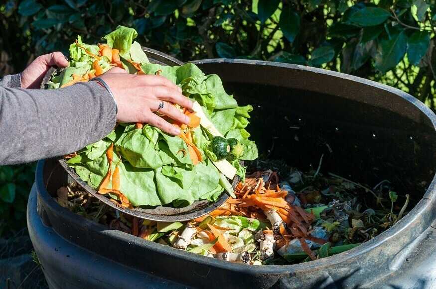 adding leftover vegetables to compost