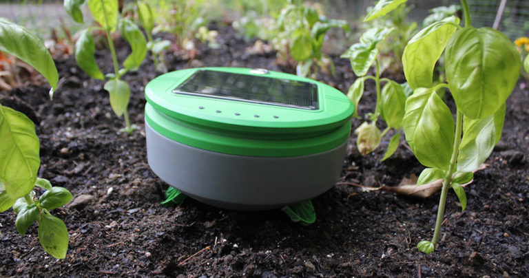 tertill weeding robot review