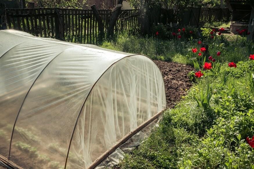 greenhouse kit in the backyard