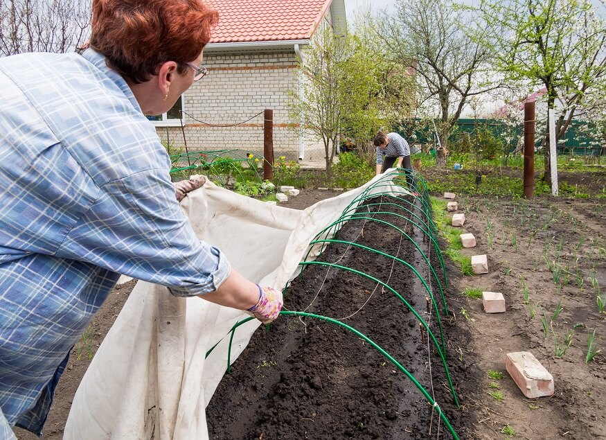 men setting up small greenhouse kit in the backyard