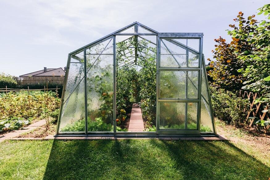 tall greenhouse in the backyard