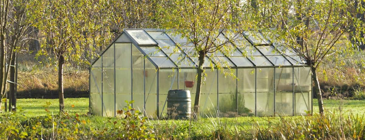 greenhouse kit in the garden