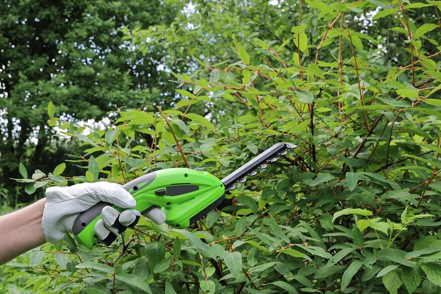 dual-purpose cordless grass shear that can trim plants