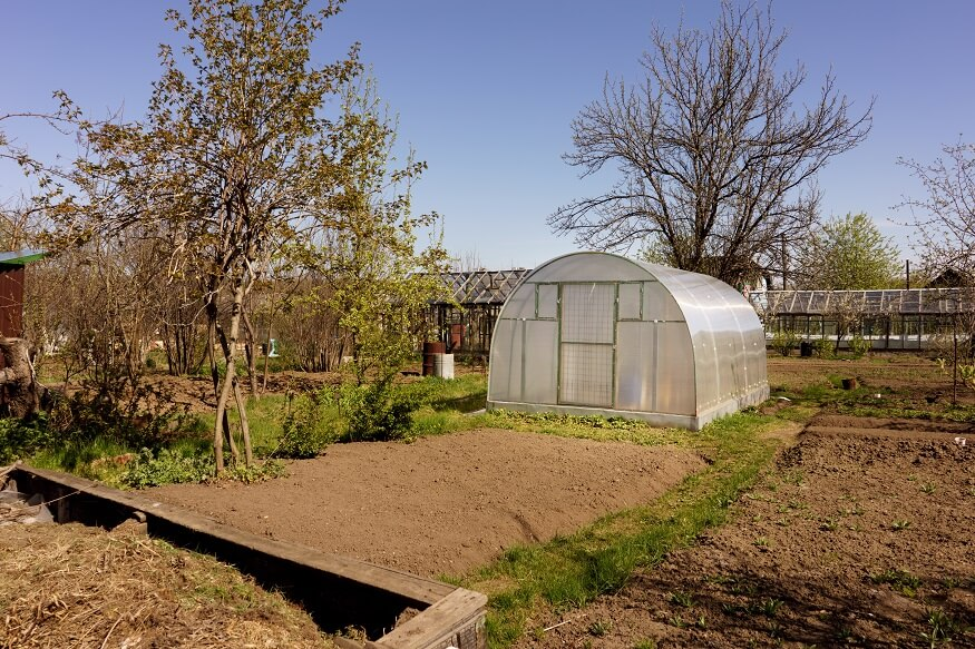 greenhouse with direct sunlight