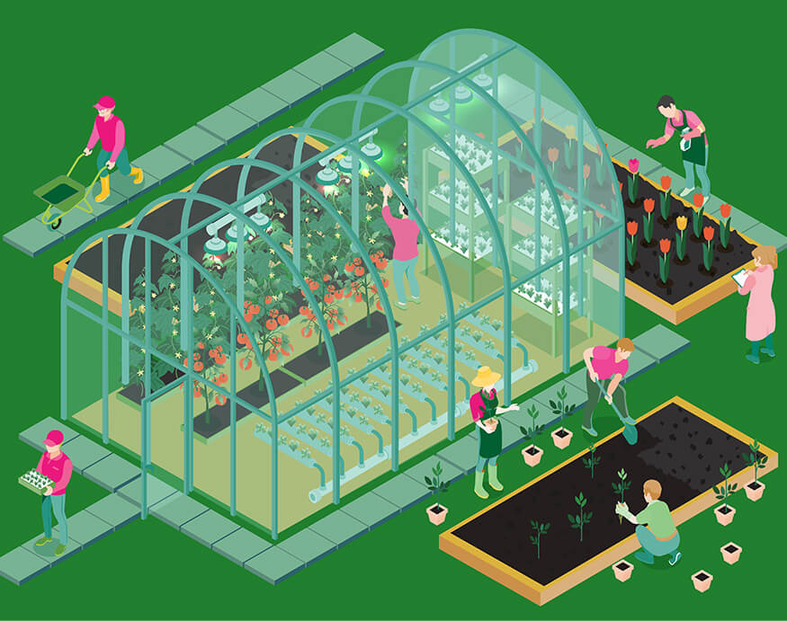 an illustration of a greenhouse
