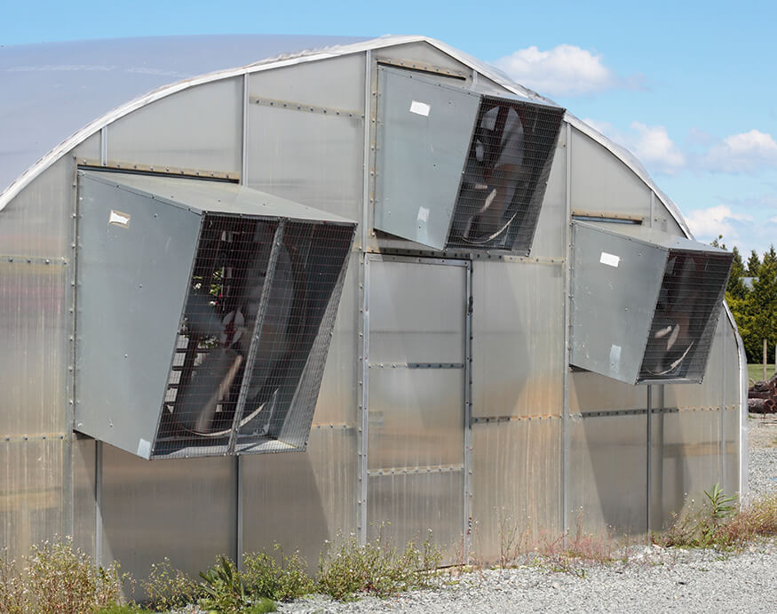 greenhouse with cooling vents