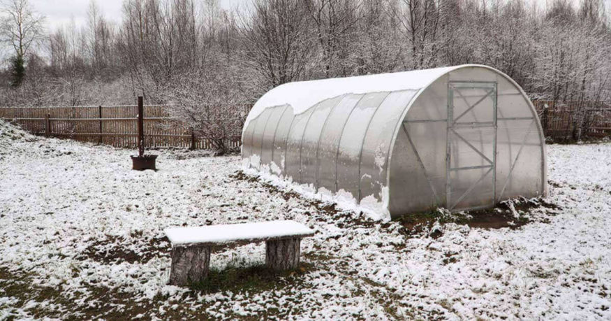 greenhouse during winter season