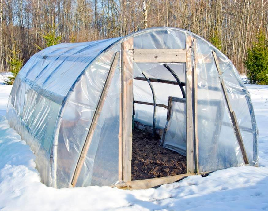 greenhouse in direct sunlight