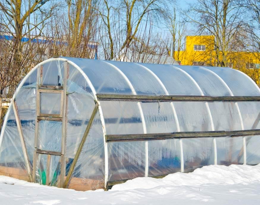 polythene greenhouse for winter gardening