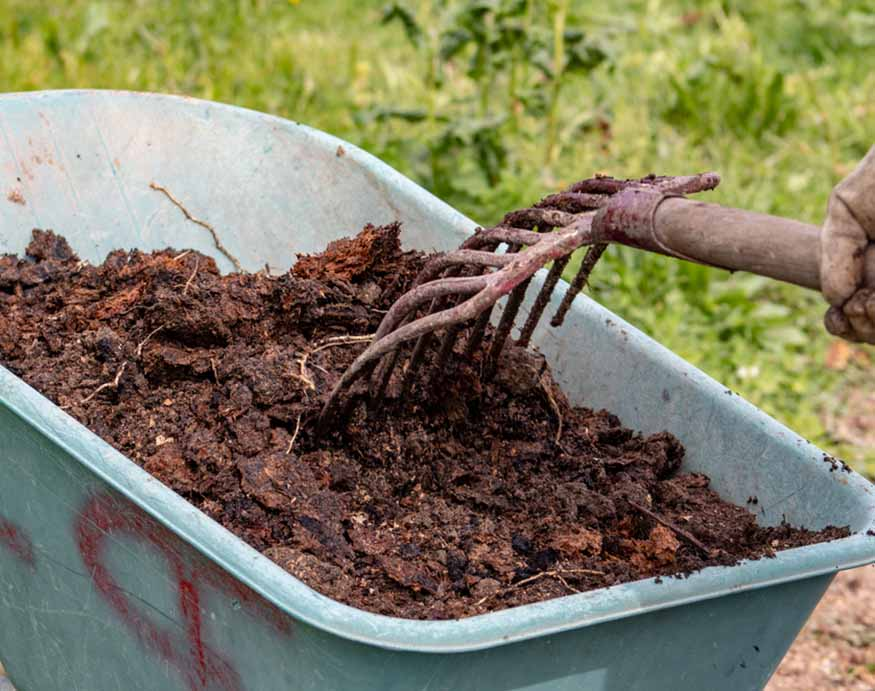 wheelbarrow filled with manure fertilizer