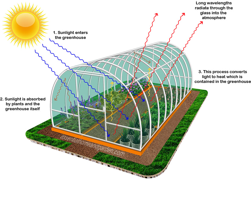 how does a greenhouse work - the science behind greenhouses